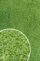 [Trávny koberec GREEN GOLF 2000 ]